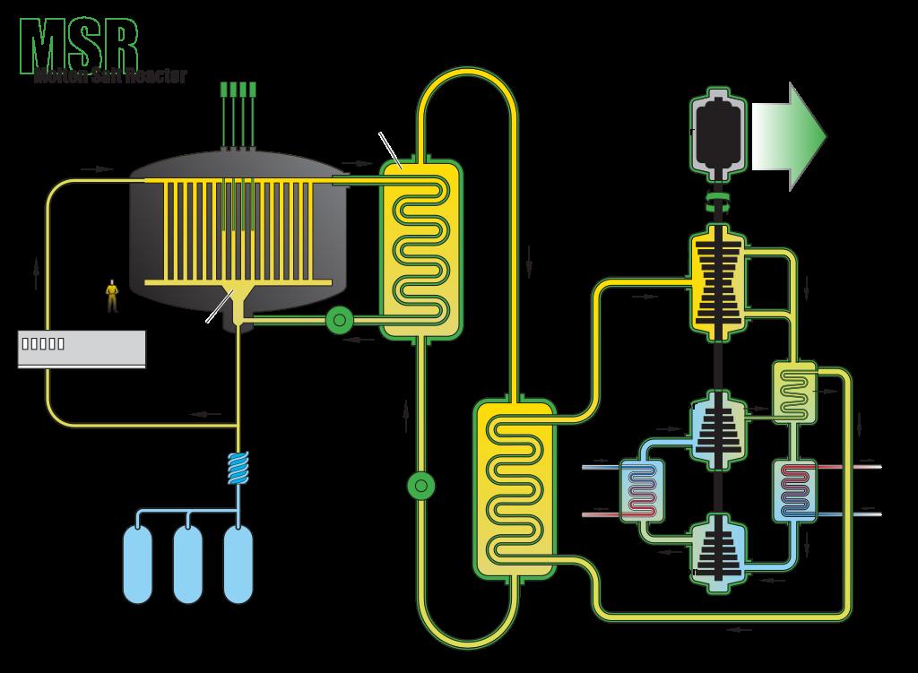 US DOE Generation IV Roadmap Molten Salt Reactor